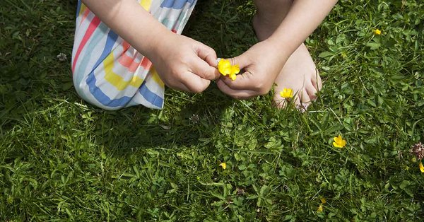 såning af græsplæne hvornår