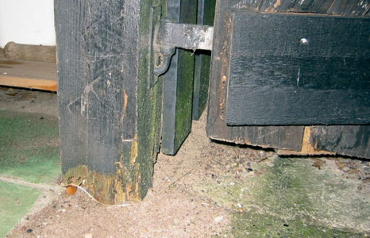 Træstolper i jord