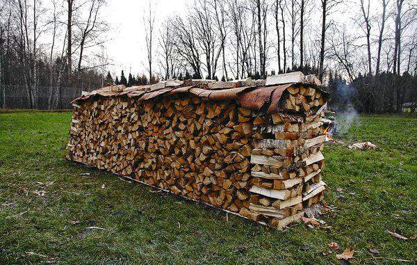 rummeter træ