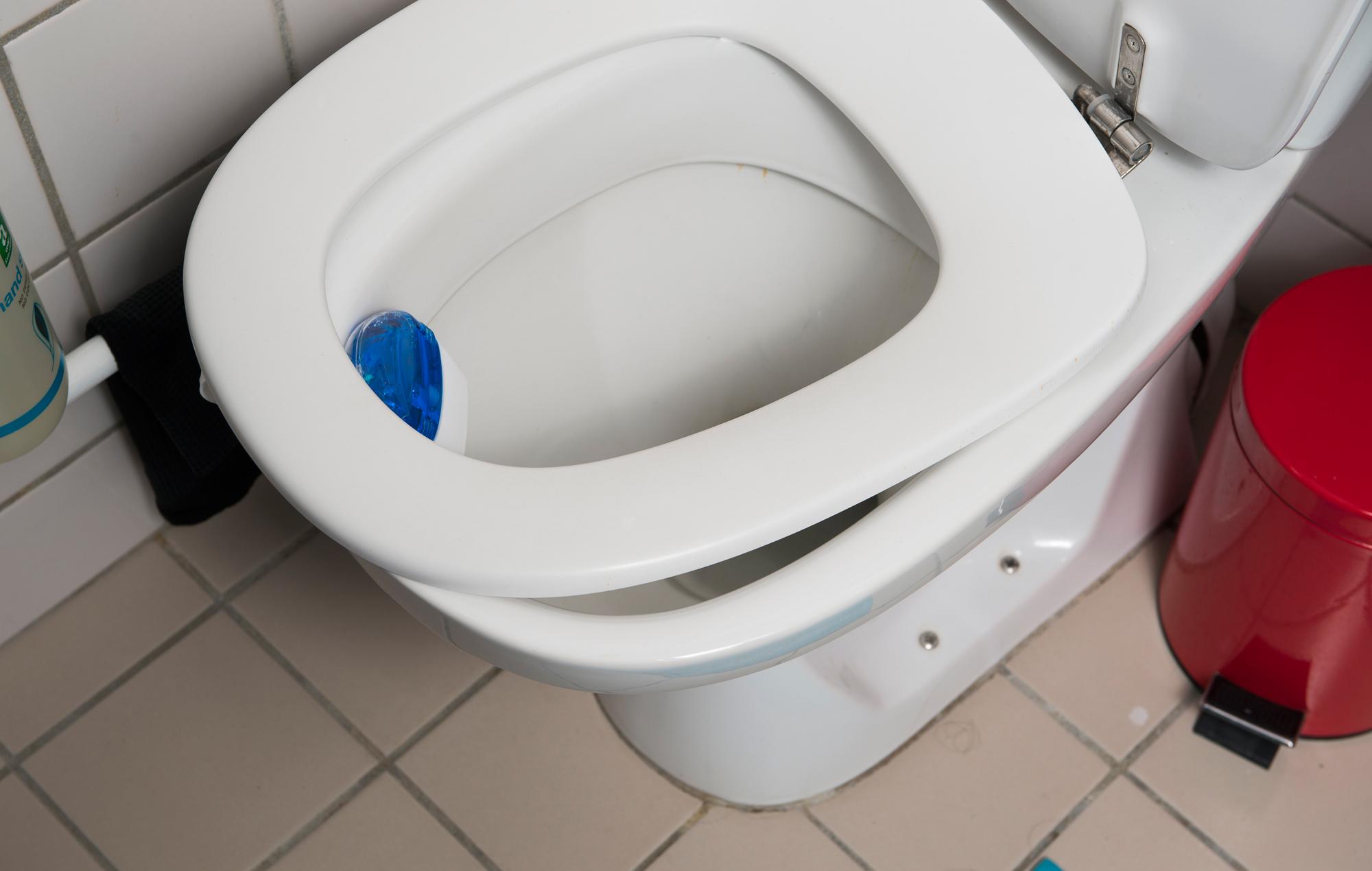 #064383 Dette års Gør Det Selv: Sådan Får Du Toiletbrættet Til At Sidde Lige Gør Det Selv Kalender 2016 5561 200012705561